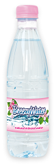 mineral water 500ml